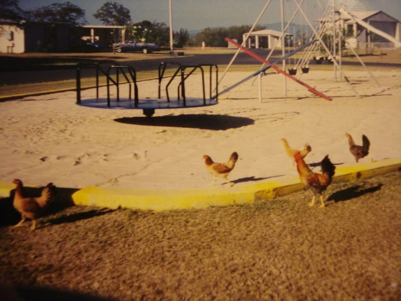 GTMO playground, taken by Kenneth Pace
